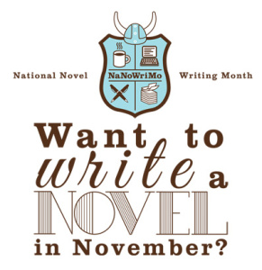 novel writing camp