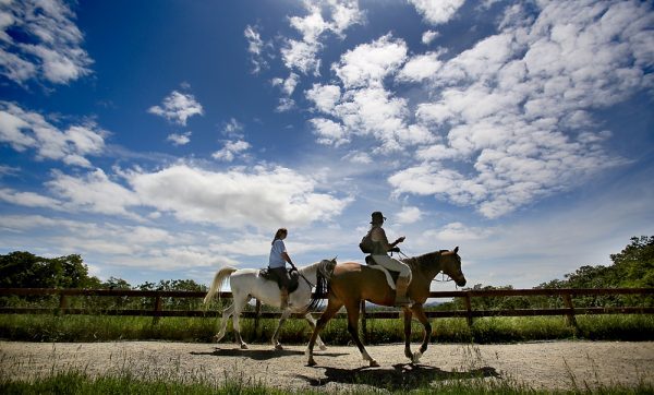 Carol Adair, left of Upper Lake and Layla Neuron of Forestville take their Arabian's Emi and Bo for a trail ride around Foothill Regional Park in Windsor, Wednesday April 20, 2016. Sonoma County was once again given A grades across the board for clean air by the American Lung Association's annual air quality report. (Kent Porter / Press Democrat ) 2016